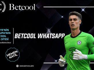 Betcool Whatsapp
